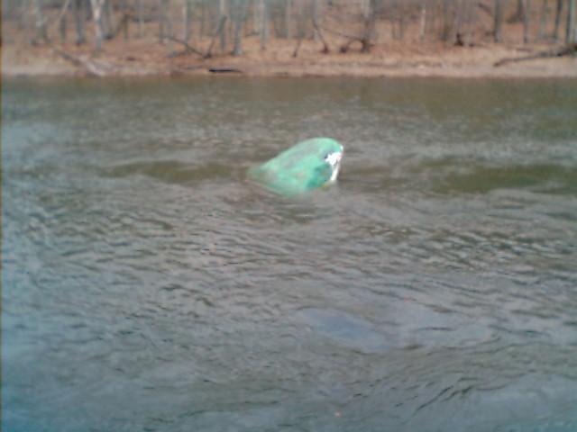 Up Stream From Kelletville Frog Rock